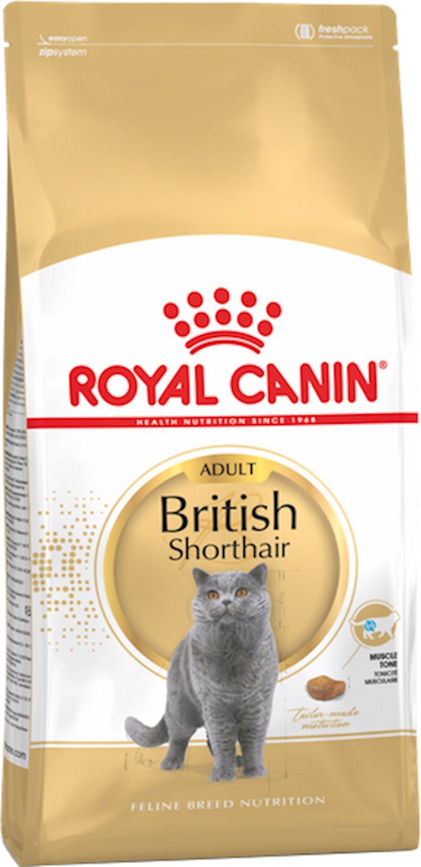Quru yem Royal Canin British Shorthair Adult 400 q