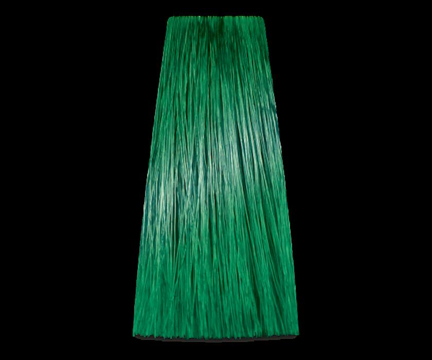 Saç üçün boya ProSalon Color Art toner yaşıl, 100 qr
