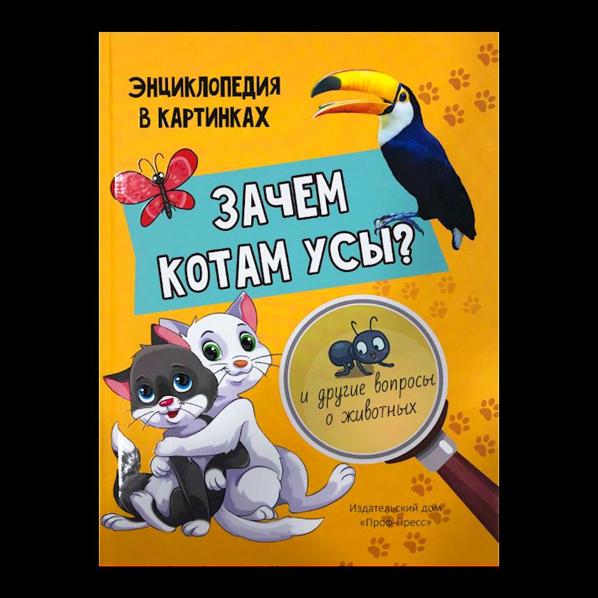 Kitab Зачем котам усы?