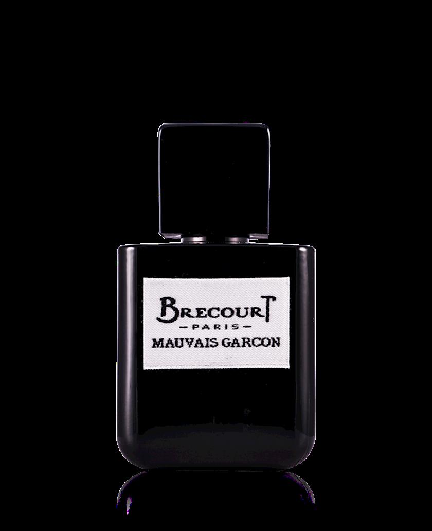 Kişilər üçün ətir suyu Brecourt Mauvais Garcon 50ml