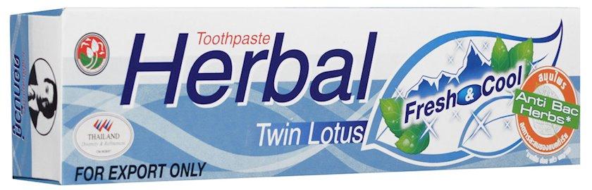 Diş məcunu Twin Lotus Herbal Fresh & Cool 100 q
