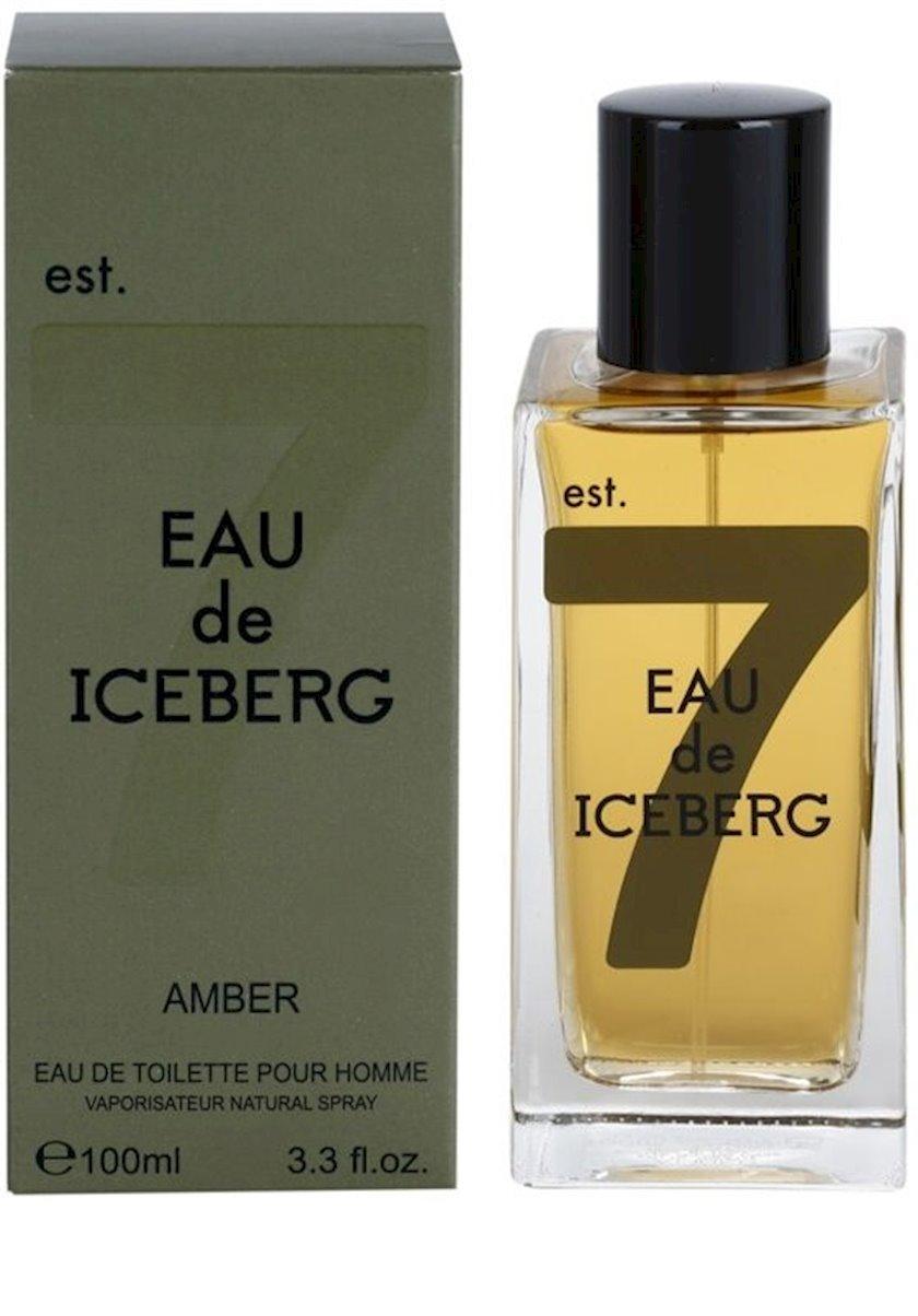 Tualet suyu kişilər üçün Iceberg Amber Eau de Iceberg, 100 ml